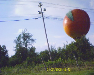 A Giant Peach...but where is James?